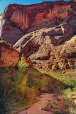 Monumento nazionale del ponte dell'arcobaleno, Utah Fotografia Stock