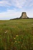 Monumento nazionale Wyoming della torre dei diavoli Fotografie Stock