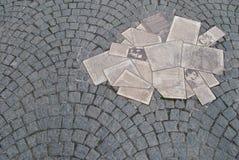 Monumento Rosa bianca Fotografia Stock Libera da Diritti