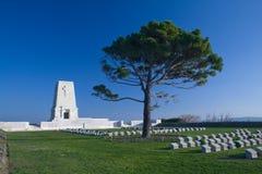 Monumento solitario Turquía del pino imagen de archivo