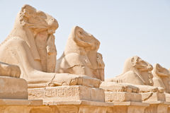 Monumentos en Luxor (Karnak) Egipto Foto de archivo