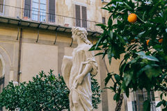 Monuments in Florence. Stock Photos