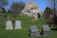 Green-Wood cemetery in Brooklyn, NY Royalty Free Stock Photo