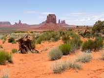 Monumenttal mit Gebüsche - USA Amerika lizenzfreies stockbild