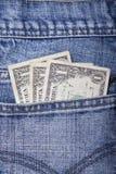 Monye in einer Tasche Lizenzfreies Stockfoto