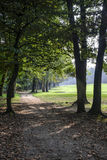 Monza Italy, the park in autumn Stock Images
