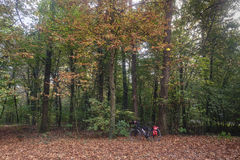 Monza Italy, the park in autumn. Bicycle Royalty Free Stock Photography