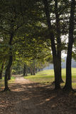 Monza Italy, the park in autumn Royalty Free Stock Photo