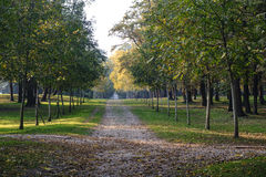 Monza Italy:  the park at fall Royalty Free Stock Images