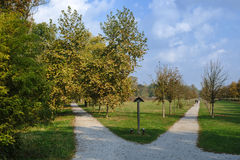Monza Italy:  the park at fall Royalty Free Stock Photography