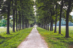Monza Park arkivbilder