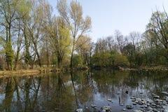 Monza parkerar: Lambro flod Royaltyfria Bilder