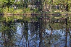 Monza parkerar: Lambro flod Royaltyfri Foto