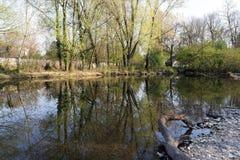 Monza parkerar: Lambro flod Royaltyfria Foton