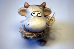 Moo-koe snuit Stock Foto