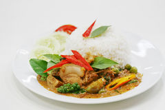 Moo pa pad pet thai food Stock Image