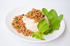 MOO tailandese di chiamata KHAO KAPRAO dell'alimento Immagine Stock