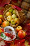 Autumn Tea Party royalty free stock photography