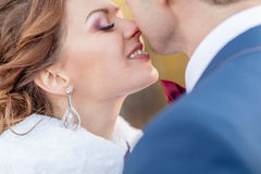 Mood of bride and groom wedding Royalty Free Stock Photography
