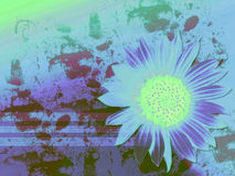 Moody. This is a colage. The sunflower is a photo manipulation. The darker areas is grunge brushing Vector Illustration