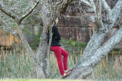 Girl in red jeans in bare tree contrast Royalty Free Stock Photography