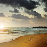 Moody beach Royalty Free Stock Photography