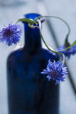 Moody blue flower with bottle in background Stock Image