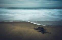 Moody calm rocky sea. stock image