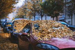 Moody day in the city. Orange, yellow leaves on the cars during a autumn period. Prague city in a Europe. Fall background with veh royalty free stock photos