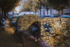 Moody day in the city. Orange, yellow leaves on the cars during a autumn period. Prague city in a Europe. Fall background with veh royalty free stock photography