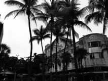 Moody day in Miami stock images