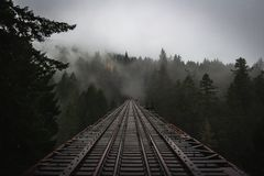 Moody Forest Trestle stock photo