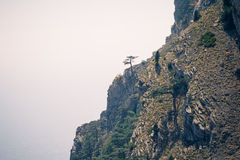 Moody Landscape with lonely tree on rocky mountains. Film effects colors Royalty Free Stock Photos