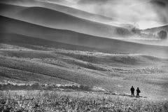 Moody monochrome landscape. Wtih sheep Stock Image