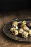 Moody natural lighting vintage retro style image of quaills eggs Stock Images