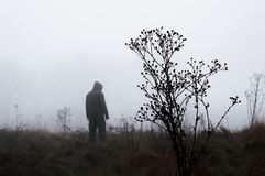 A moody out of focus hooded figure standing in the background on a foggy winters day. With a muted edit.  stock photos