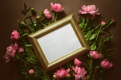 Moody peonies background with a space for a text. In a frame, flat lay stock images