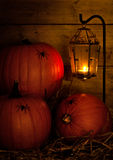 Moody Pumpkins Stock Images