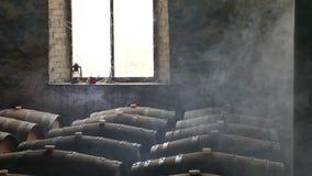 Moody Scene of Wine Cellar stock video footage