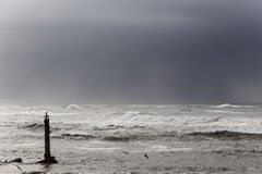 Moody seascape Royalty Free Stock Images