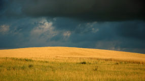 Moody sky. Over grain field Royalty Free Stock Photography
