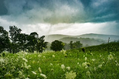 Moody Stormy Landscape. Field with mountains in background summer Stock Images