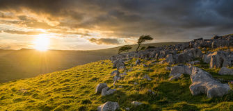 Moody stormy sunrise light on the Yorkshire Moors. Dramatic stunning sunrise on top of the Yorkshire moors through a moody cloudy sky, with golden light casting royalty free stock photography