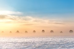Sunrise snowy landscape in fog stock photo