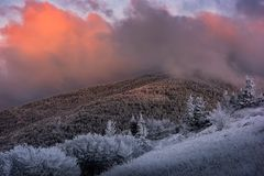 Winter sunrise, Appalachian Mountains. A moody winter sunrise along the Appalachian Trail in Tennessee`s Roan Mountain State Park royalty free stock photos