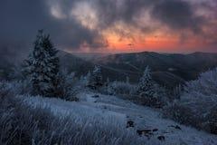 Winter sunrise, Appalachian Mountains. A moody winter sunrise along the Appalachian Trail in Tennessee`s Roan Mountain State Park stock photo