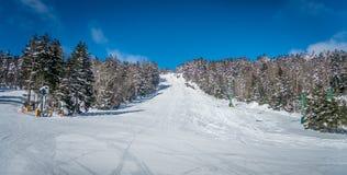 Mooi aard en landschap rond de toevlucht van de sneeuwschoenski in cass stock foto