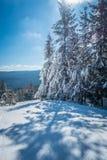 Mooi aard en landschap rond de toevlucht van de sneeuwschoenski in cass stock fotografie