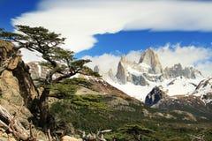 Mooi aardlandschap met Mt Fitz Roy Stock Afbeelding