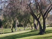 Mooi aardlandschap rond Peter F Schabarum Regionaal Park stock fotografie
